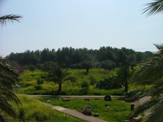 Израиль открыл свободный вход в национальные парки