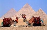 Спрос на туры в Египет в России по-прежнему низкий