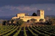«Новые» старые винодельческие регионы