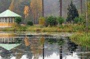 Южная часть Швеции. Рыбалка. Разбойники из хвойного леса